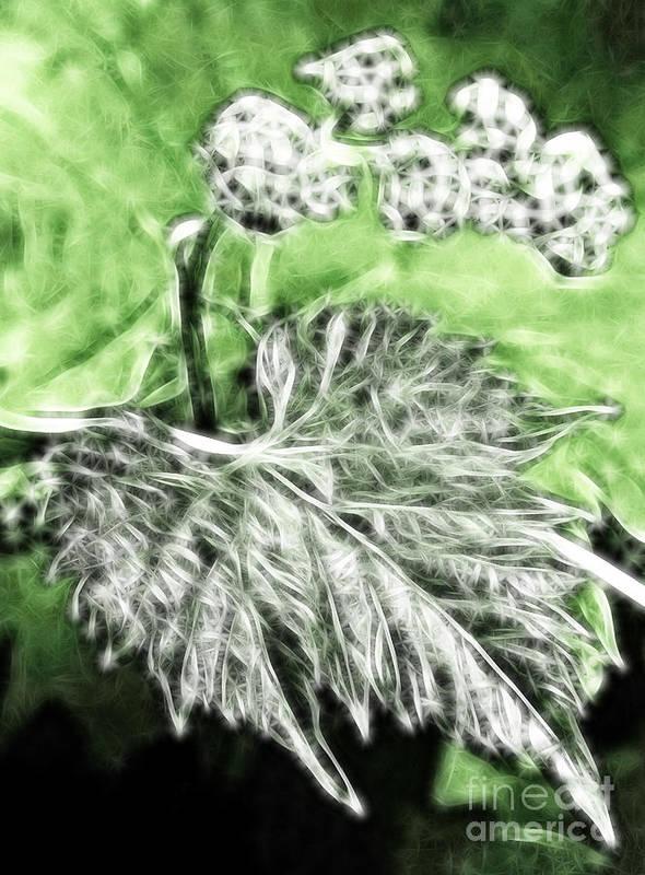 Grape Art Print featuring the digital art Grape Vine Leaf by Odon Czintos