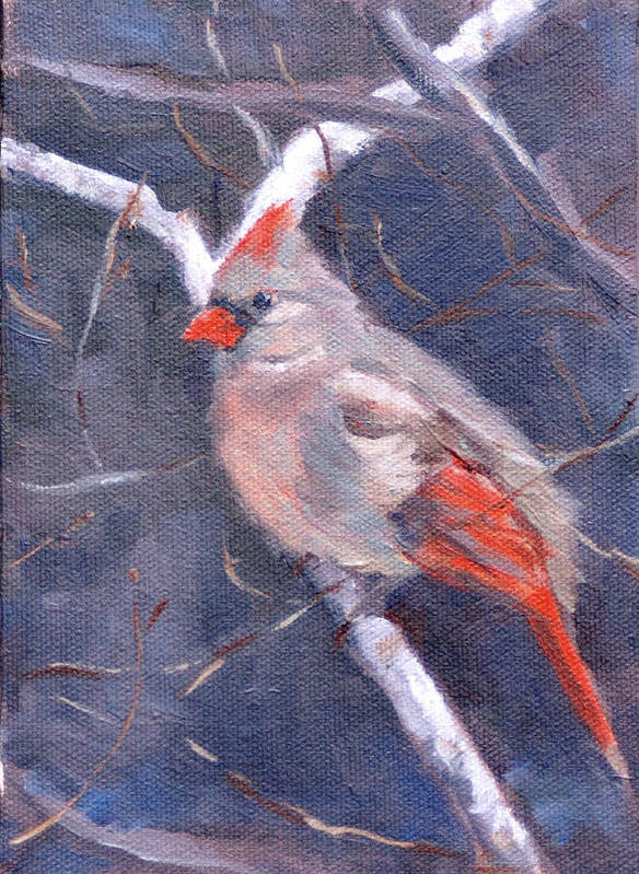 Bird Art Print featuring the painting Lady In Red by Sandra Harris