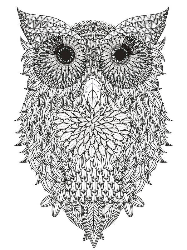 leaves owl coloring page joyimage