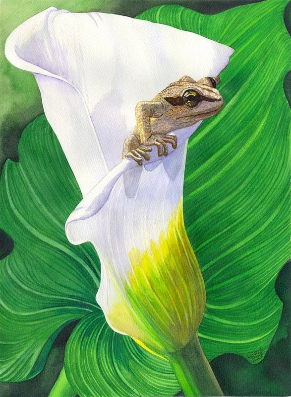 Frog Art Print featuring the painting Lily Dipping by Catherine G McElroy