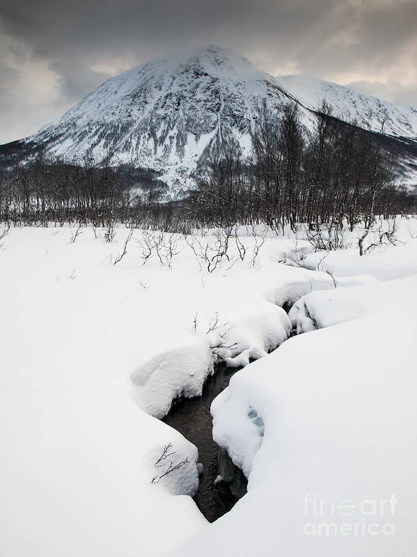 Winter Art Print featuring the photograph Mountain Stream by David Hanlon