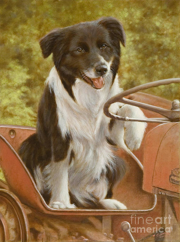 Dog Paintings Art Print featuring the painting Off To Work by John Silver