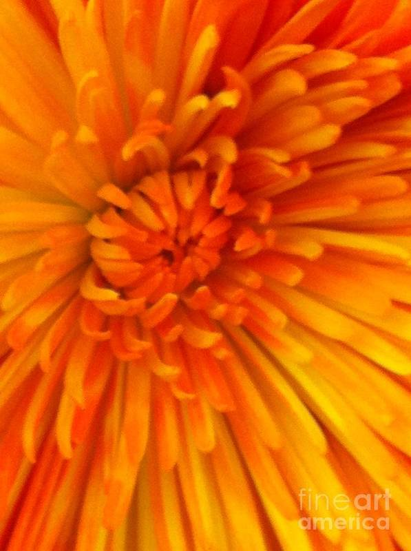 Orange Art Print featuring the photograph Orange Light by Nona Kumah