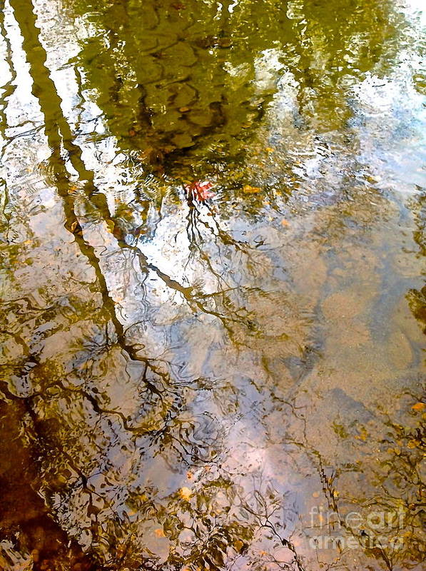 Water Prints Art Print featuring the photograph Reflections by Delona Seserman