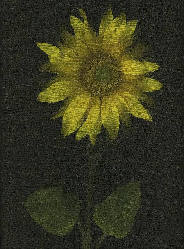 Artwork And Painting Art Print featuring the photograph Sunflower by Deddeda