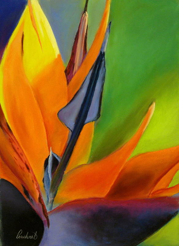 Bird Of Paradise Art Print featuring the painting Bird Of Paradise by Prashant Shah