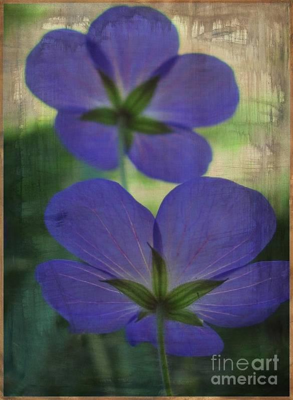 Flowers Art Print featuring the digital art Blue Geranium by Irina Hays