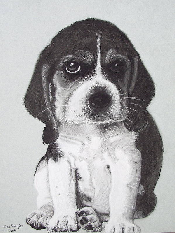 Dog Art Print featuring the painting Colin by Kim Shayler