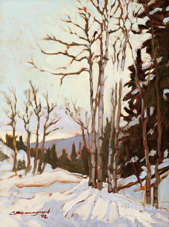 Aspen Trees Art Print featuring the painting Cool Morning Sun by Chula Beauregard