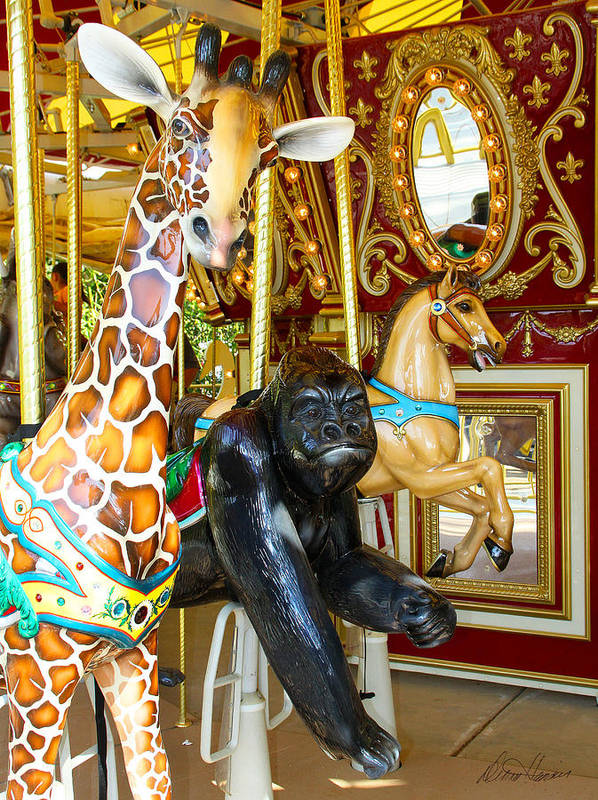 Carousel Art Print featuring the photograph Curious Carousel Beasts by Diana Haronis