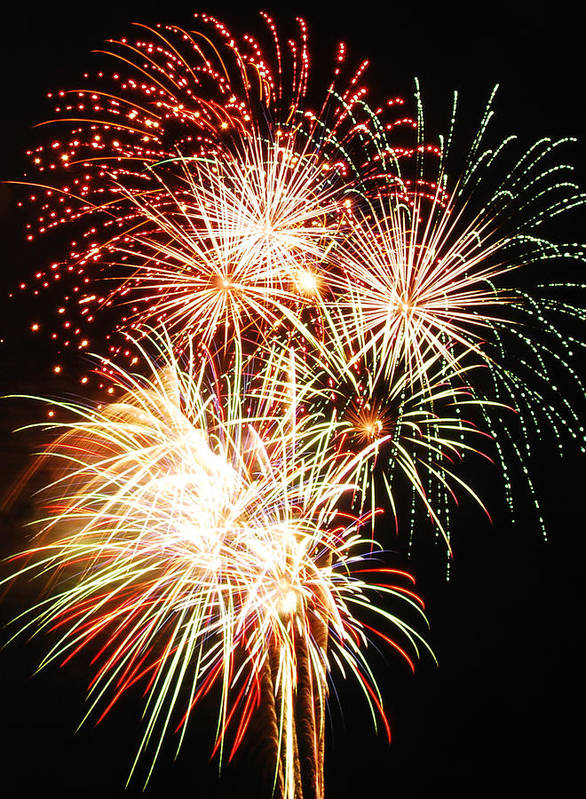 Fireworks Art Print featuring the photograph Fireworks 1569 by Michael Peychich