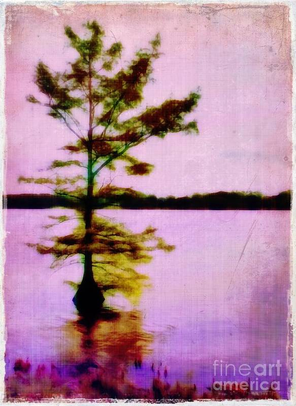 Louisiana Art Print featuring the photograph Lone Cypress by Judi Bagwell
