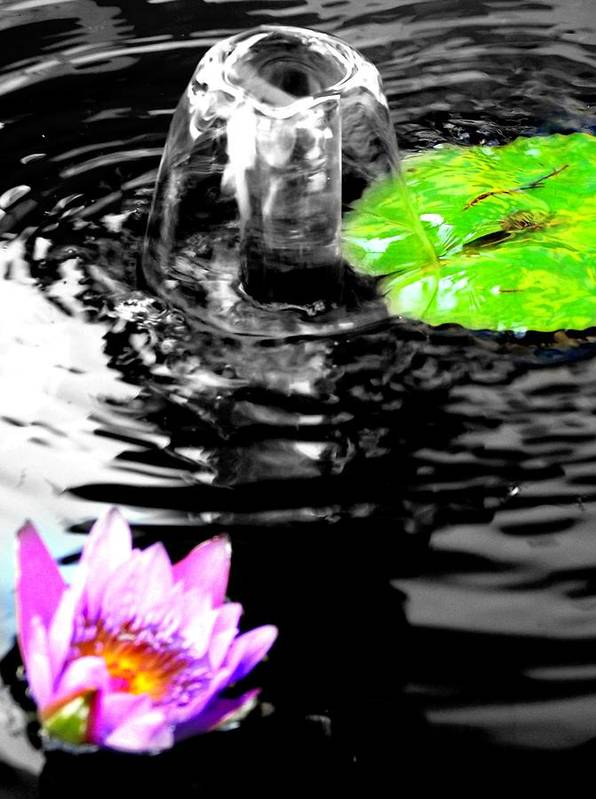Water Art Print featuring the photograph Ripples by Shawna Gibson