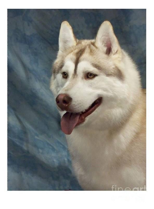 Siberian Husky Digital Art Art Print featuring the digital art Siberian Husky 954 by Larry Matthews