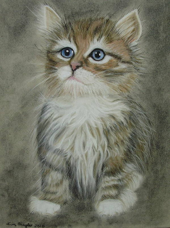 Cat Art Print featuring the painting Sugar by Kim Shayler