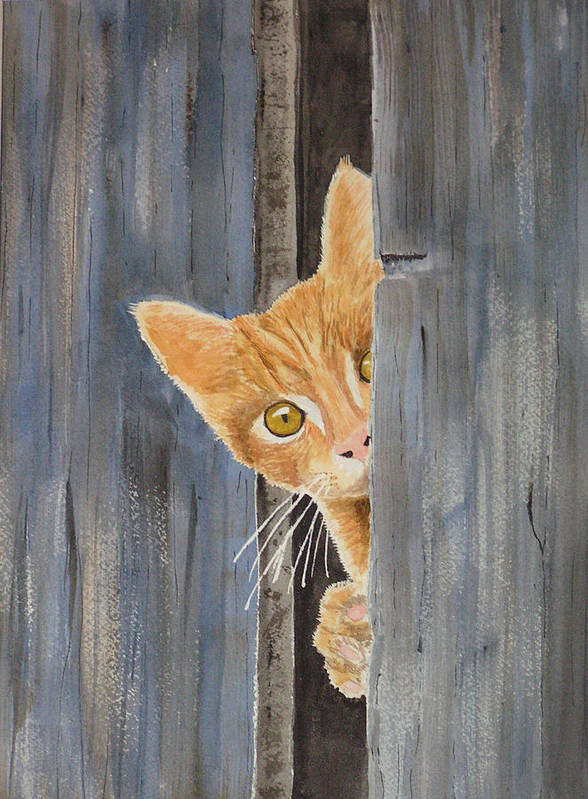 Cat Art Print featuring the painting Peeking Kitty by Ally Benbrook