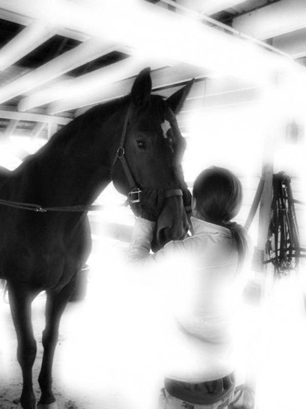 Horse Art Print featuring the photograph Tacking Up by Donna Thomas