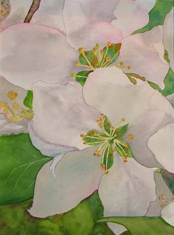 Apple Blossoms Art Print featuring the painting Apple Blossoms by Sharon E Allen