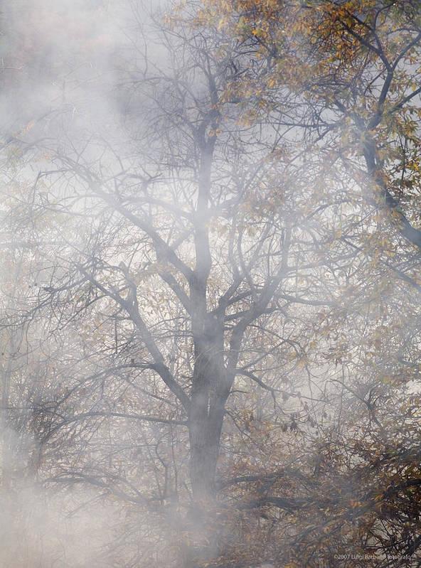 Autumn Art Print featuring the photograph Autumn4 by Luigi Barbano BARBANO LLC
