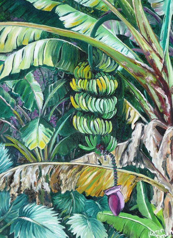 Caribbean Painting Bananas Trees P Painting Fruit Painting Tropical Painting Art Print featuring the painting Bananas by Karin Dawn Kelshall- Best