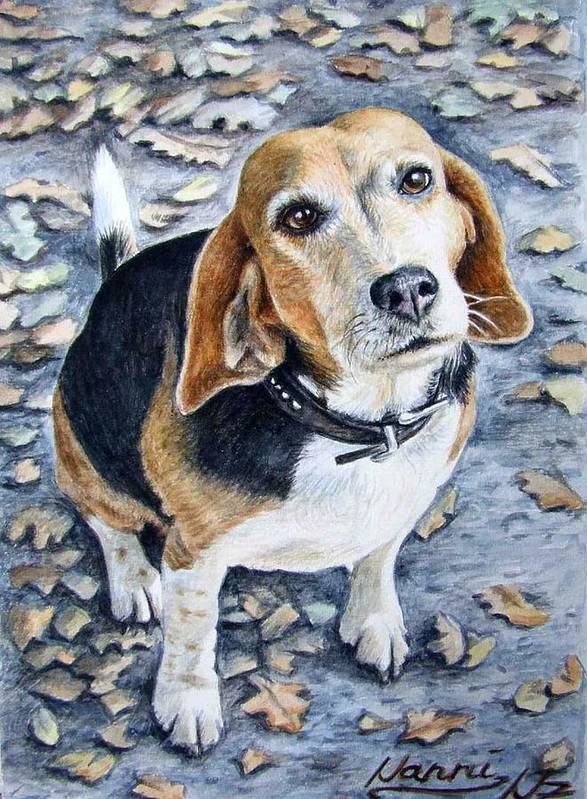 Dog Art Print featuring the painting Beagle Nanni by Nicole Zeug