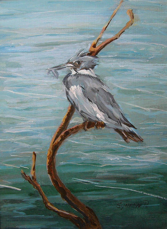 Birds Art Print featuring the painting Belted Kingfisher by Synnove Pettersen