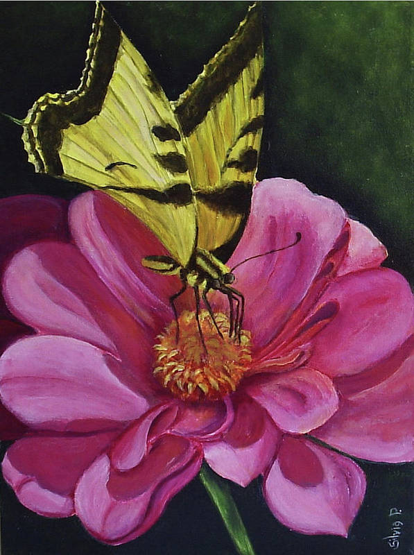 Flower Art Print featuring the painting Butterfly On A Pink Daisy by Silvia Philippsohn