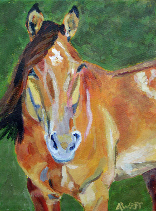 Horse Portrait Art Print featuring the painting Casino by Anne West