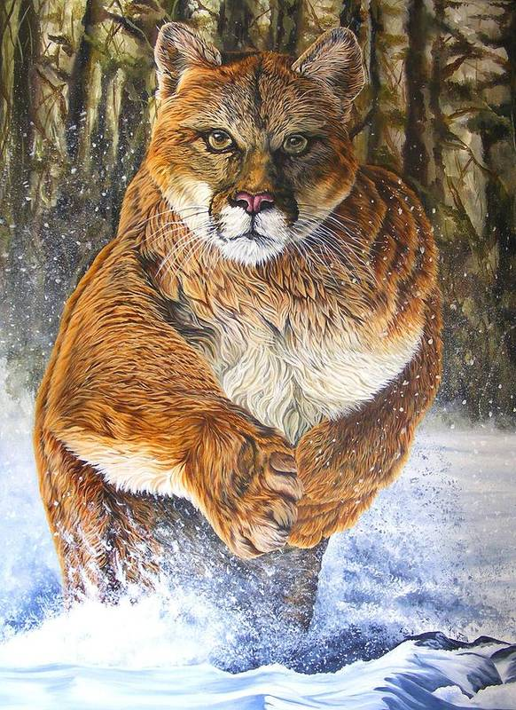 Couger Art Print featuring the painting Couger by Donald Dean