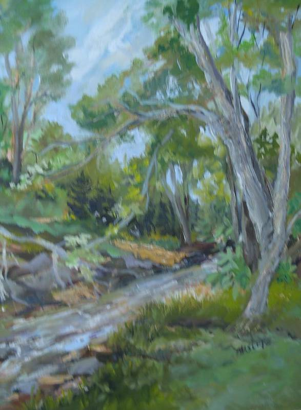 Landscape Art Print featuring the painting Creek At Linn Haven by Marilyn Masters