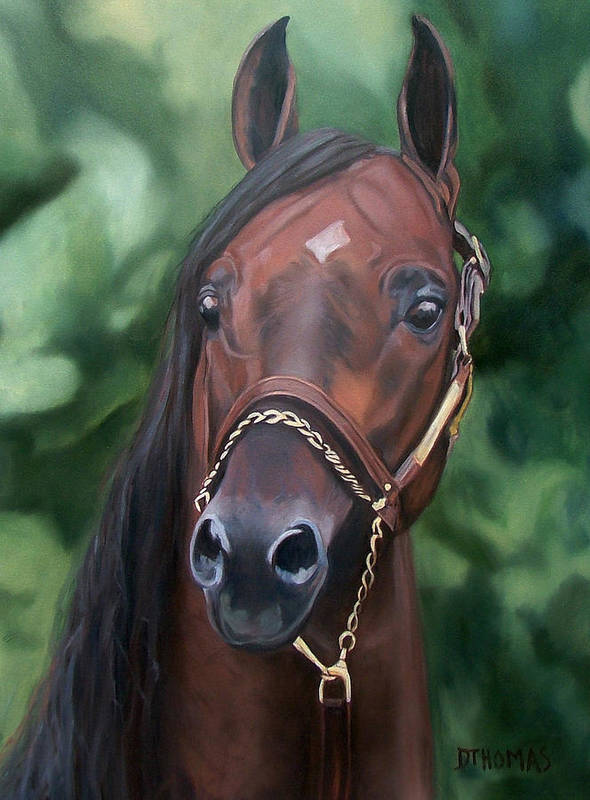 Horse Portrait Art Print featuring the painting Dont Worry Saddlebred Sire by Donna Thomas