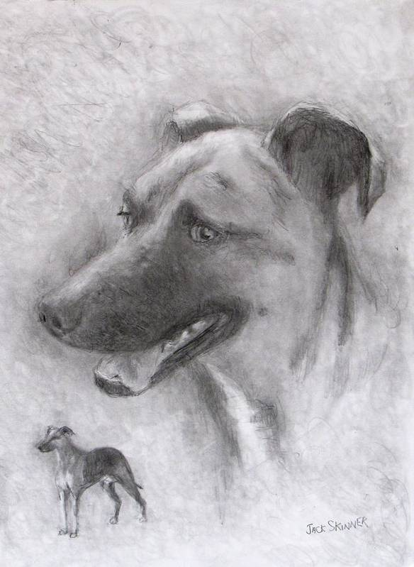 Dog Art Print featuring the drawing Eliot by Jack Skinner