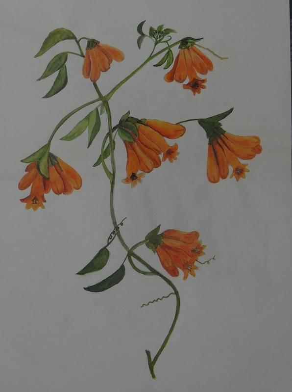 Flower Stem Plucked From The Neighbourhood Art Print featuring the painting Flower Stem Plucked From Neighbours Garden by Saloni Verma