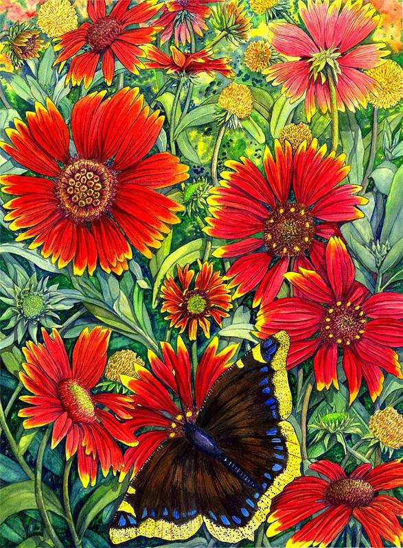 Butterfly Art Print featuring the painting Gaillardia by Catherine G McElroy
