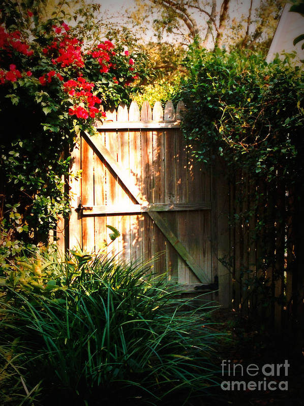 Garden Gate Art Print featuring the photograph Garden Gate by Carol Groenen