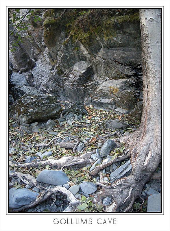 Trees Art Print featuring the photograph Gollum's Cave by Karen W Meyer