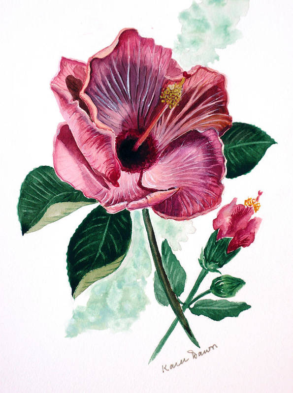 Flora Painting L Hibiscus Painting Pink Flower Painting Greeting Card Painting Art Print featuring the painting Hibiscus Dusky Rose by Karin Dawn Kelshall- Best