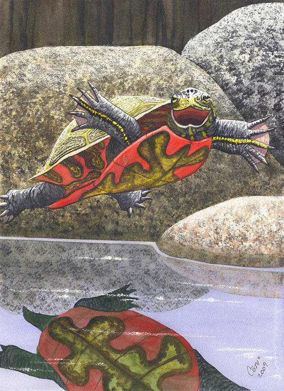 Turtle Art Print featuring the painting Im Flying by Catherine G McElroy