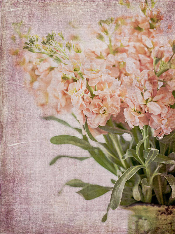 Flowers Art Print featuring the photograph In A Vase #2 by Rebecca Cozart