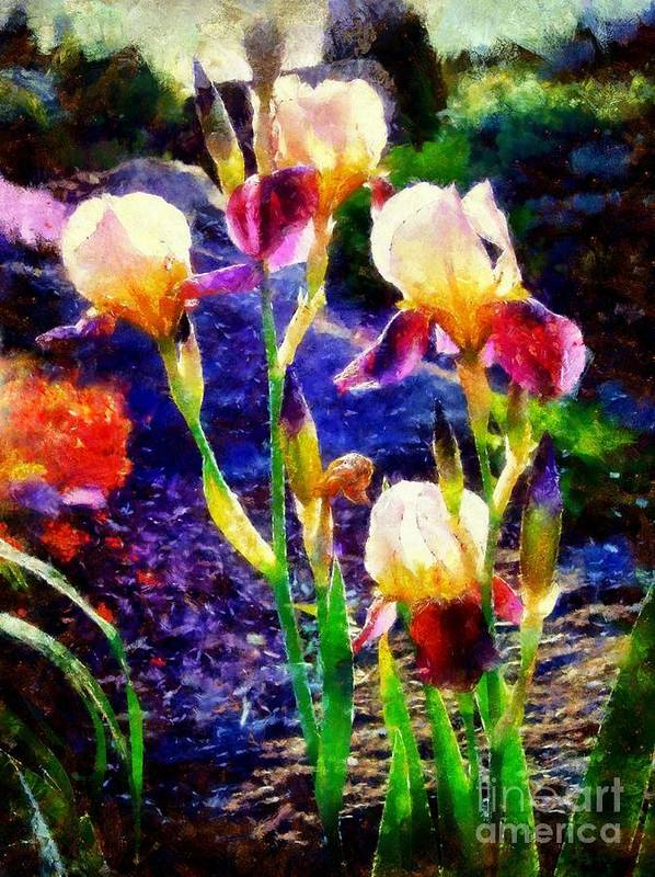 Iris Art Print featuring the photograph Iris Song by Janine Riley