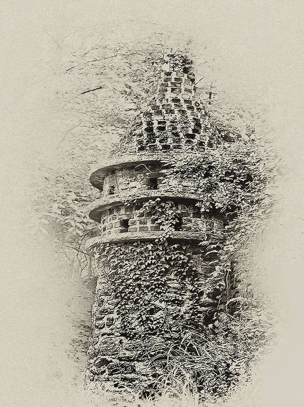 Philadelphia Art Print featuring the photograph Ivy Covered Castle In The Woods by Bill Cannon