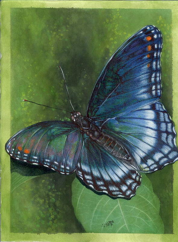 Insects Art Print featuring the mixed media Jewel Tones by Barbara Keith