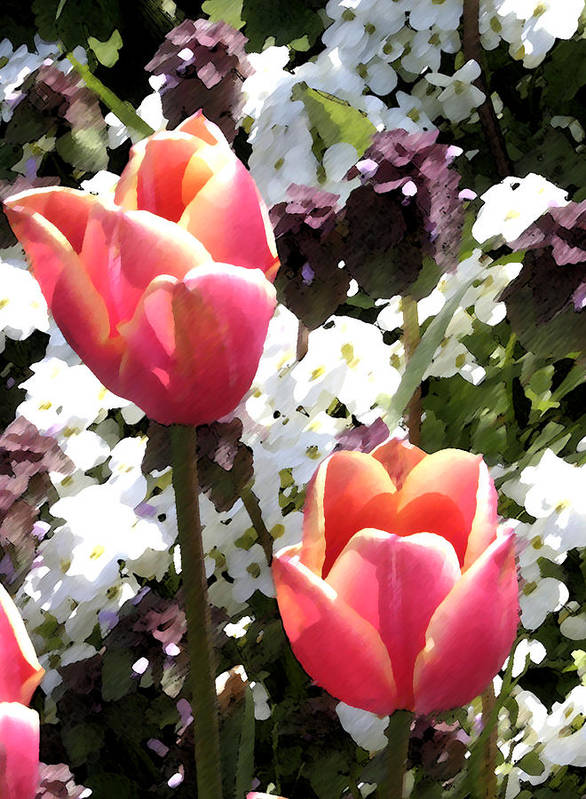Tulips Art Print featuring the digital art Love Tulips by Mary Gaines