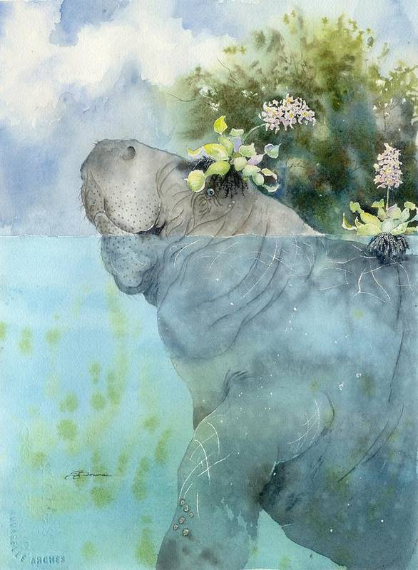Manatee Art Print featuring the painting Manatees New Hat by Sharon Bowman