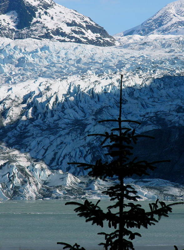 Glaciers Art Print featuring the photograph Mendenhall Glacier by Kenna Westerman