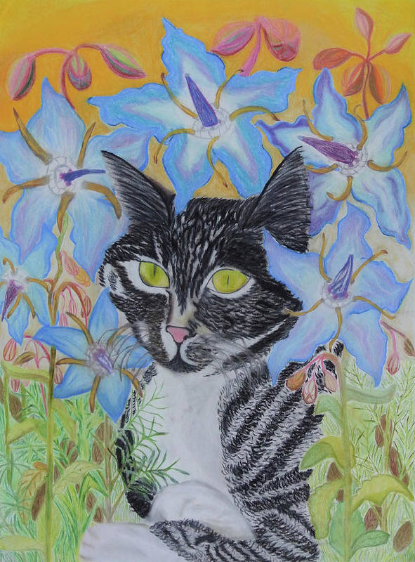 Cat Art Print featuring the pastel Raphael by Adora Miller
