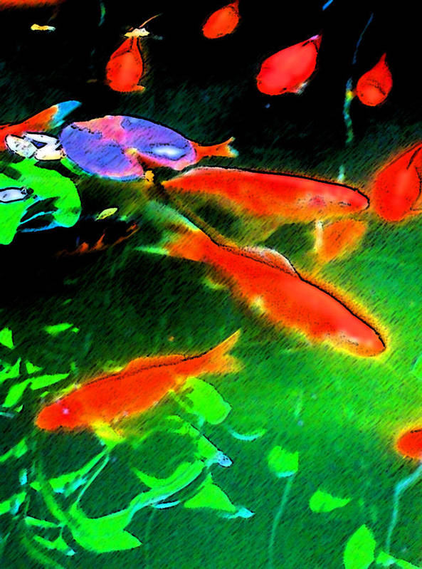 Goldfish Art Print featuring the digital art Real Gold Fish by John Toxey