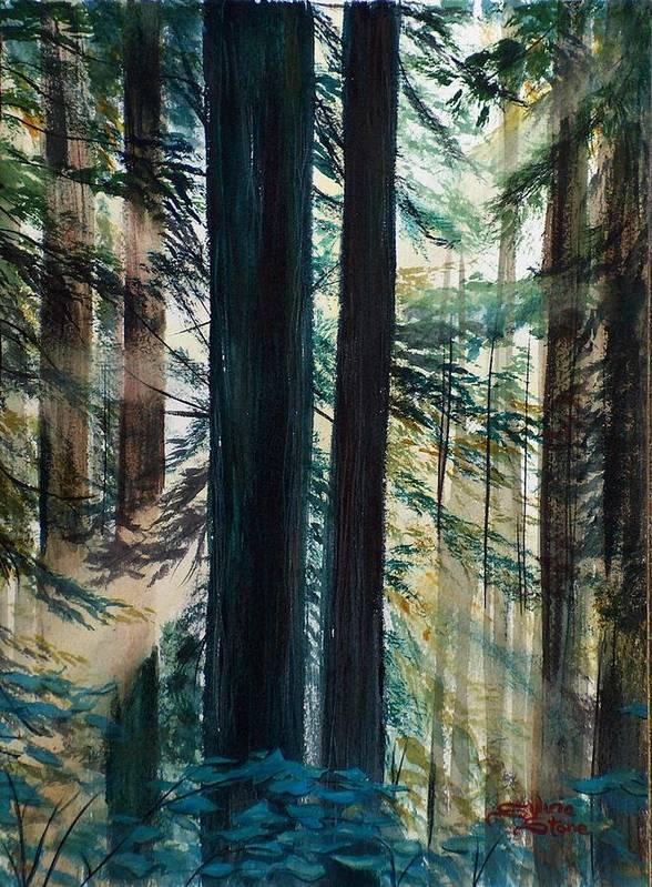 Redwood Art Print featuring the painting Redwood Light by Sylvia Stone