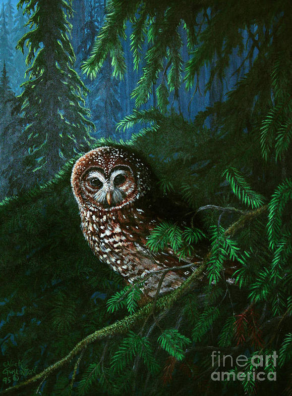 Owl Art Print featuring the painting Spotted Owl In Ancient Forest by Nick Gustafson