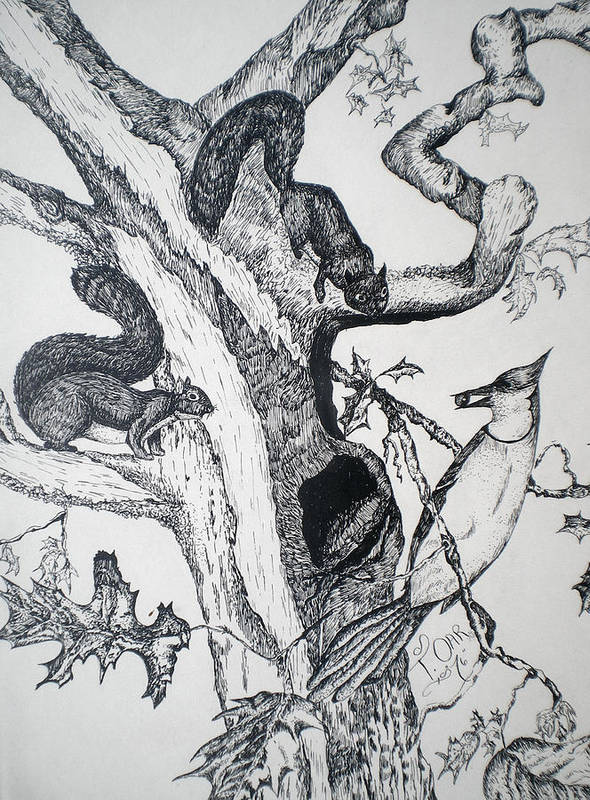 Nature Art Print featuring the drawing Squirrels And Bird by Tammera Malicki-Wong